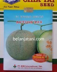 Melon Action 434, Action 434 F1, Melon Action 434 F1, Melon Action 434 Murah, Melon Action 434 Terbaru, Melon Action 434 Terbaik, Harga Murah, Terbaru, Terbaik, Belanja Tani, Bisi, Cap Kapal Terbang, Chia Tai Seed