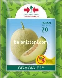 Melon Gracia, Beli Melon Gracia, Jual Melon Gracia, Melon Gracia Terbaru, Melon Gracia Terbaik, East West Seed, Benih Melon, Belanja Tani