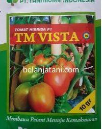 Tomat TM Vista, Tomat F1 TM Vista, TM Vista F1 Tani Murni, Jual Bibit TM Vista, Beli Benih F1 TM Vista, Tomat Buah TM Vista, Buah Tomat TM Vista, Belanja Tani, Tani Murni Indonesia, TM Seeds